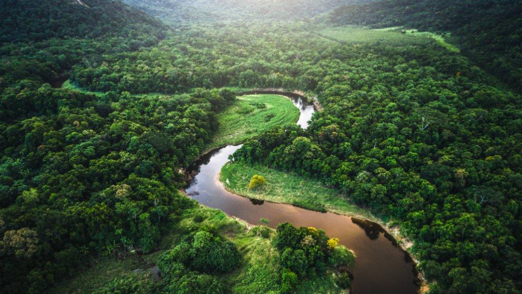 Amazonia en riesgo con la eliminación de 11 nuevas áreas protegidas en Brasil
