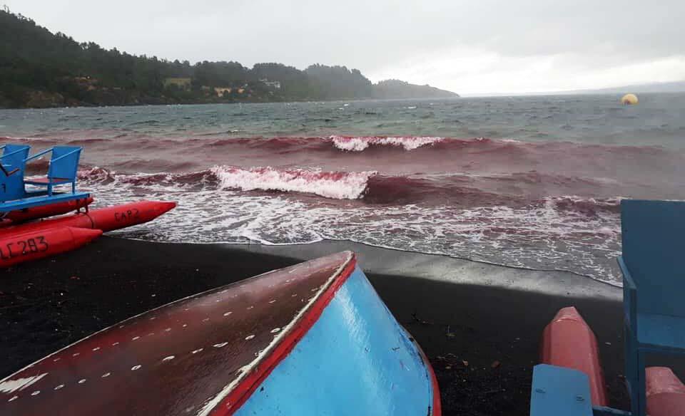 Acusan a actividad deportiva de manchar con pintura orilla del Lago Villarrica