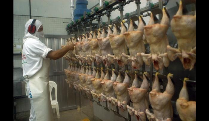 """La millonaria condena a Walmart, Cencosud y SMU por la """"colusión de los pollos"""""""