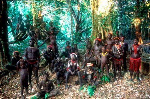 Ordenan la expulsión de ocho millones de indígenas en India