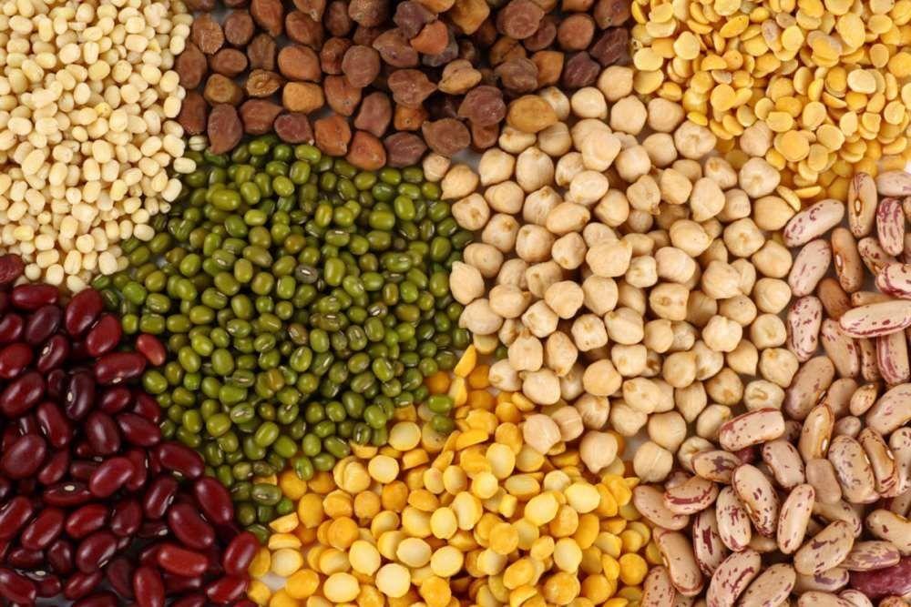 Las legumbres, el alimento más nutritivo desde el principio de los tiempos