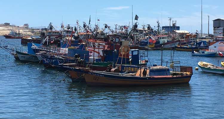 Caldera: Pescadores presentan querella contra Minera Candelaria por derrame de cloruro ferroso al mar
