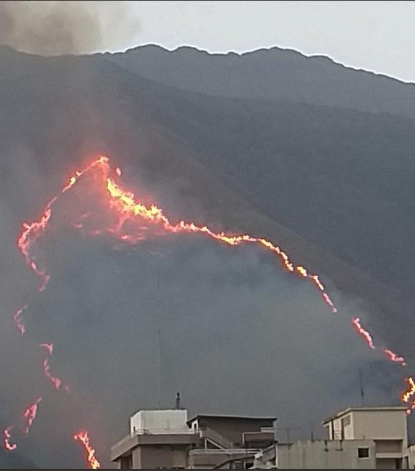 (Fotos) Incendio consumió 50 hectáreas del pulmón vegetal de Caracas