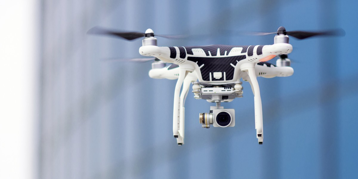 Promueven el uso de drones para estudiar colonias de osos marinos en Alaska