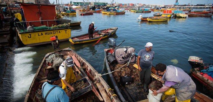 Pescadores artesanales denuncian campaña de despidos masivos por parte de la industria pesquera