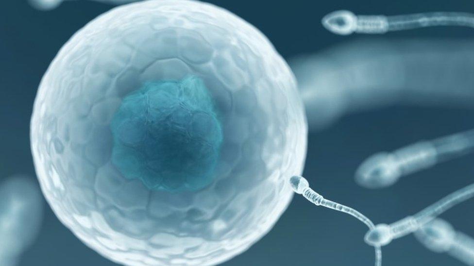 Un doctor de fertilidad inseminaba a sus pacientes con su esperma