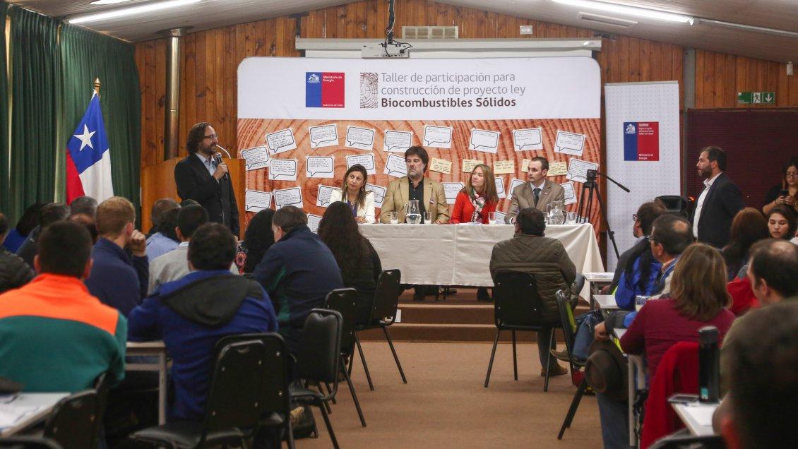 Aysén: Leñeros presentaron sus reparos al proyecto de ley de biocombustibles sólidos
