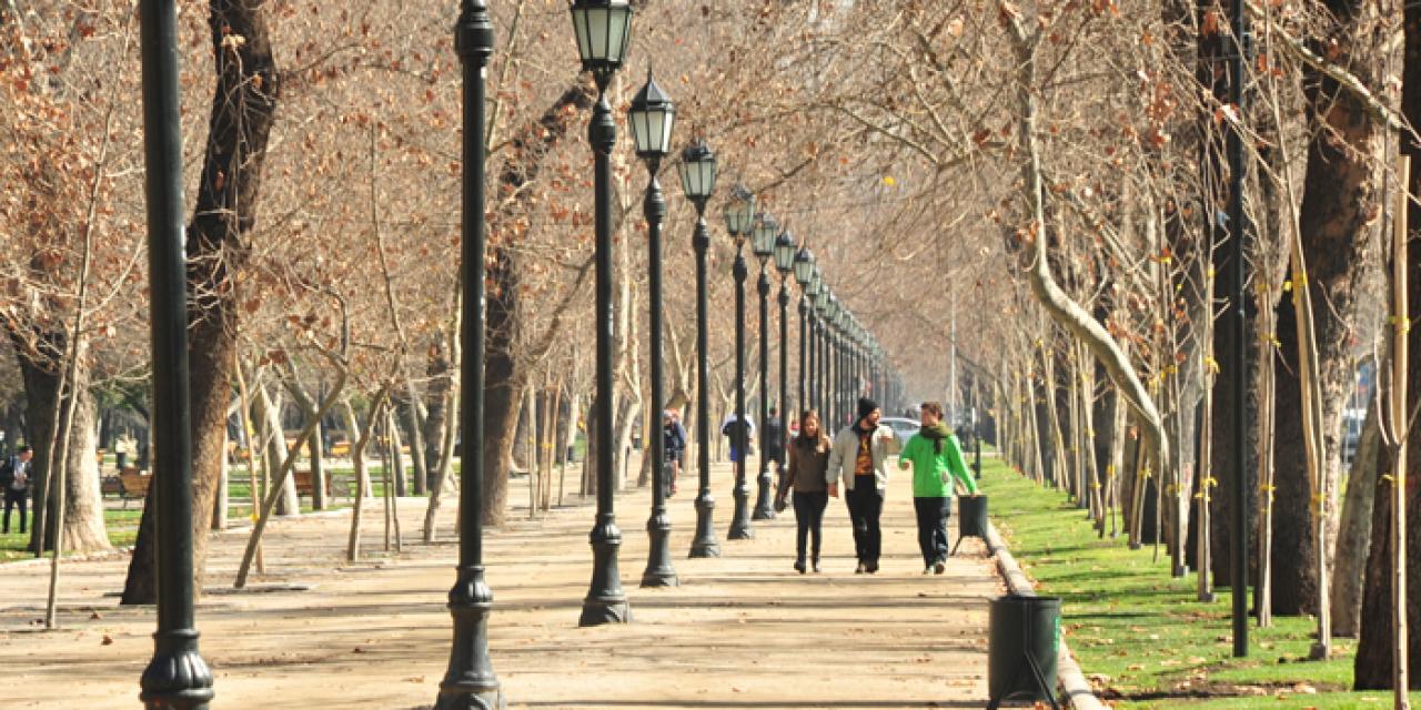 Estudio vincula falta de áreas verdes con un mayor riesgo de sufrir obesidad