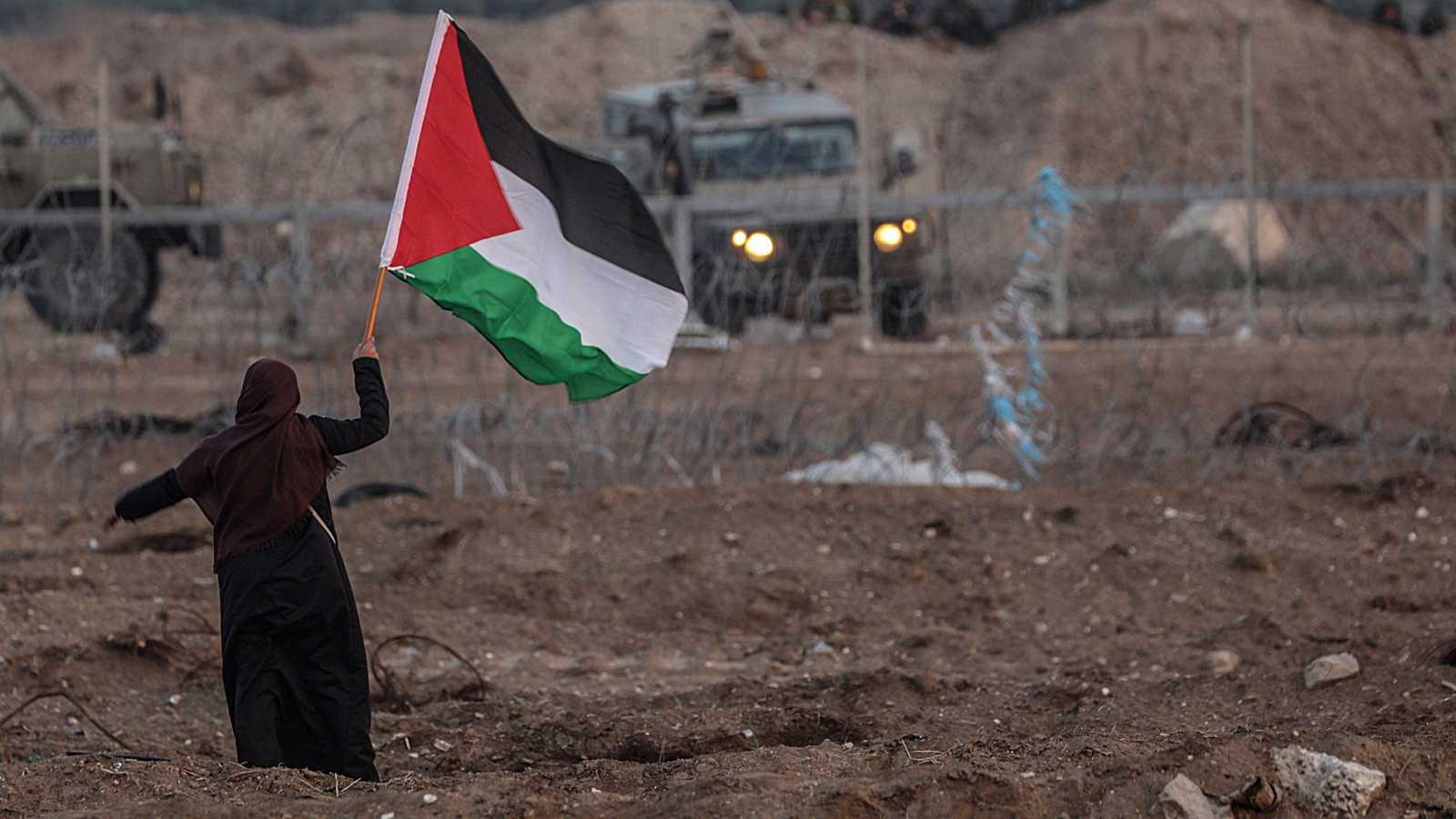 (Fotos) Asedio israelí contra Gaza también acaba con la fauna