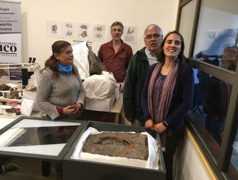 Huella humana más antigua de América estará en exposición en el Museo del Pleistoceno de Osorno