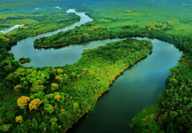 Brasil, Bolivia y Paraguay se comprometen a preservar el Pantanal