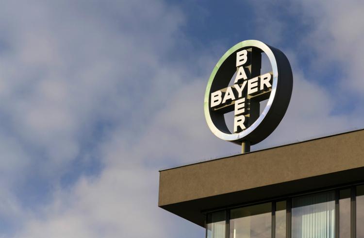 Advierten sobre la construcción en Chile de la mayor fábrica de semillas de Bayer-Monsanto de Latinoamérica