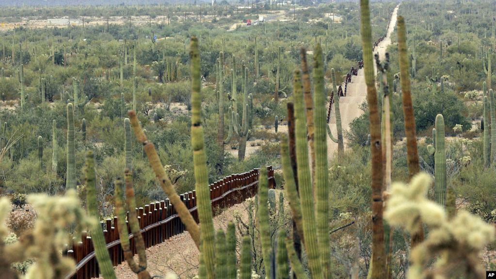 Muro fronterizo de EE. UU. amenaza la vegetación de un parque nacional y la vida silvestre