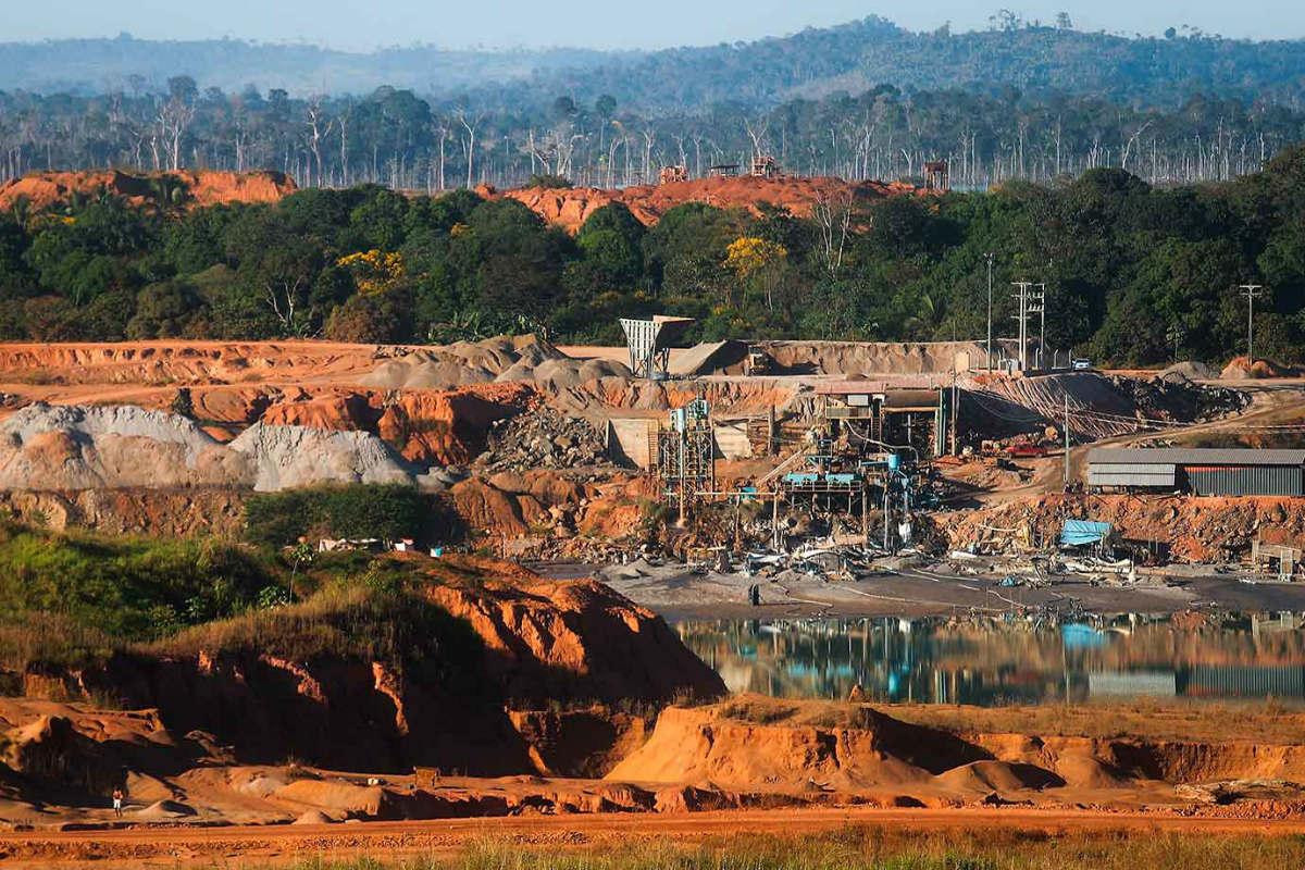 Planes de Bolsonaro en la Amazonia son un peligro para la vida en el planeta