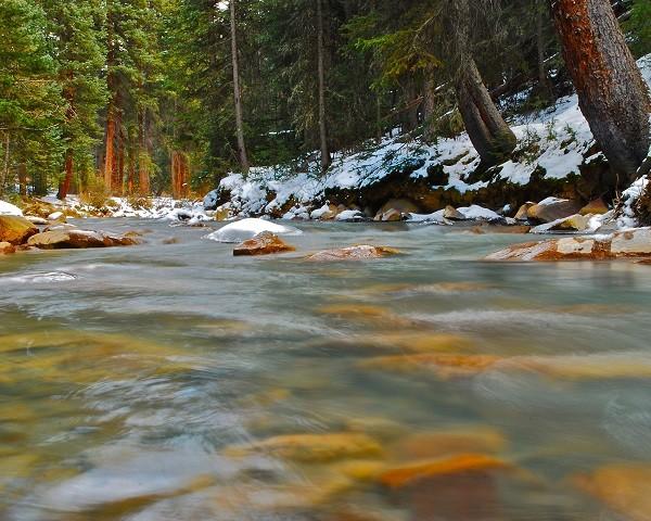 ¡Alerta! cientos de ríos están contaminados de antibióticos