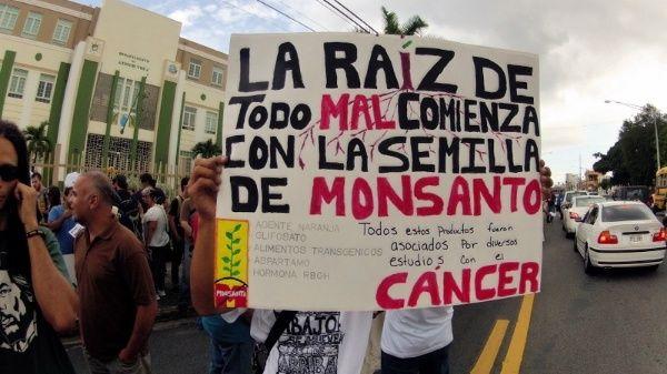 Millonaria derrota judicial para Monsanto por el cáncer que contrajo una pareja