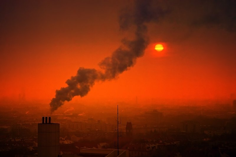 Día Mundial del Ambiente: ONU llama a gobiernos a actuar con firmeza contra la contaminación