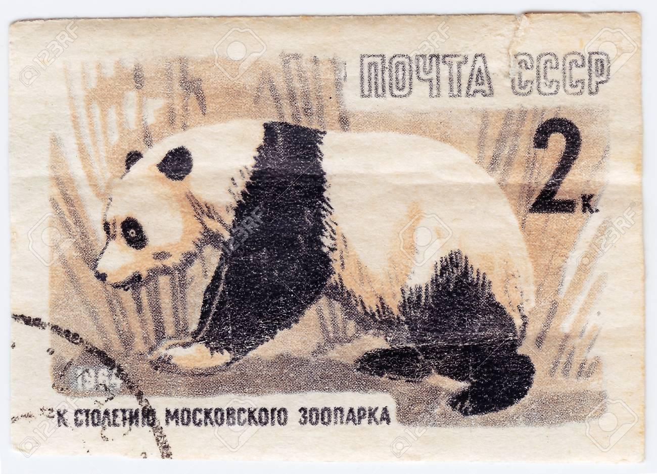 Moscú de fiesta por cumpleaños de los pandas obsequiados por Pekín