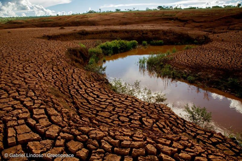 """Greenpeace: """"Estamos entre los 25 países del mundo que sufrirán mayor estrés hídrico al 2040"""""""