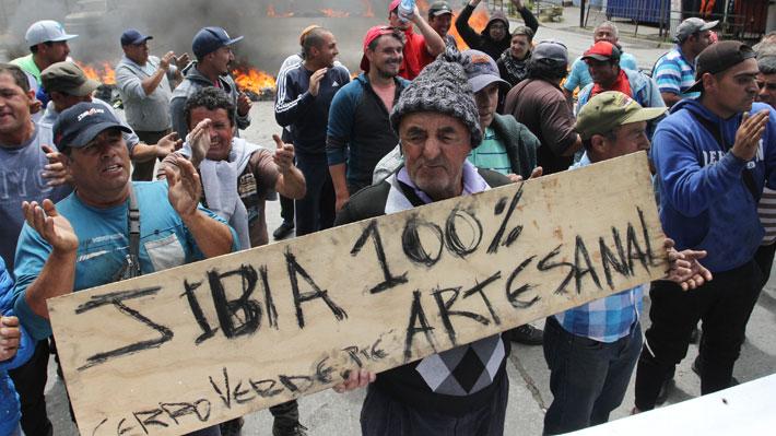 """Triunfo de pescadores artesanales: Cámara rechazó aplazar entrada en vigencia de """"ley de la jibia"""""""