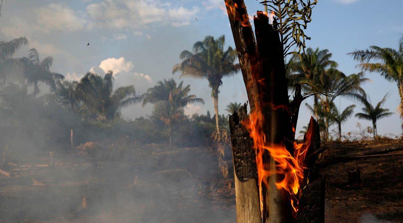 ¿Quién provocó un infierno en la Amazonía? Estos son los principales responsables