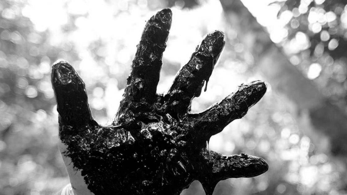 Cifras que dan escalofríos: ¿Quién está matando a los defensores del medio ambiente en todo el mundo?
