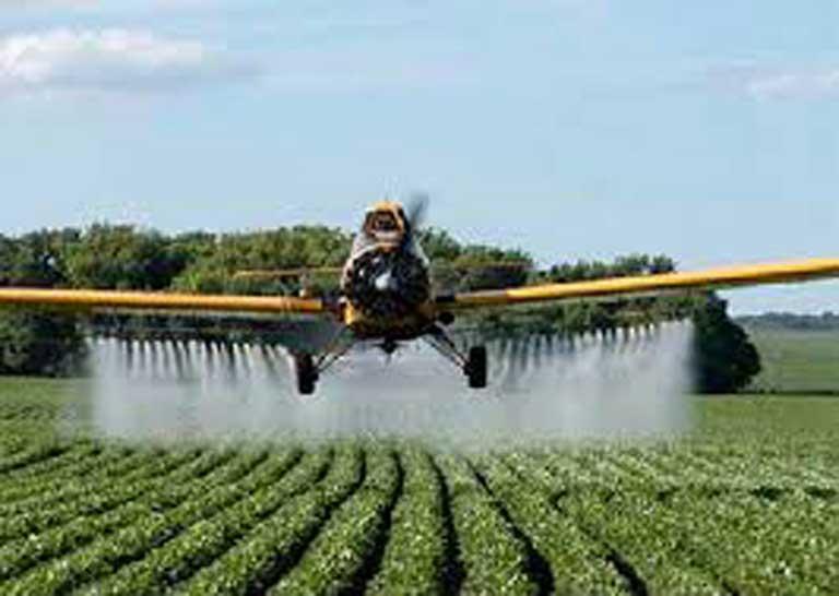 De los pesticidas al racismo e injusticia socioambiental en Wallmapu: Las otras formas de exterminar la vida