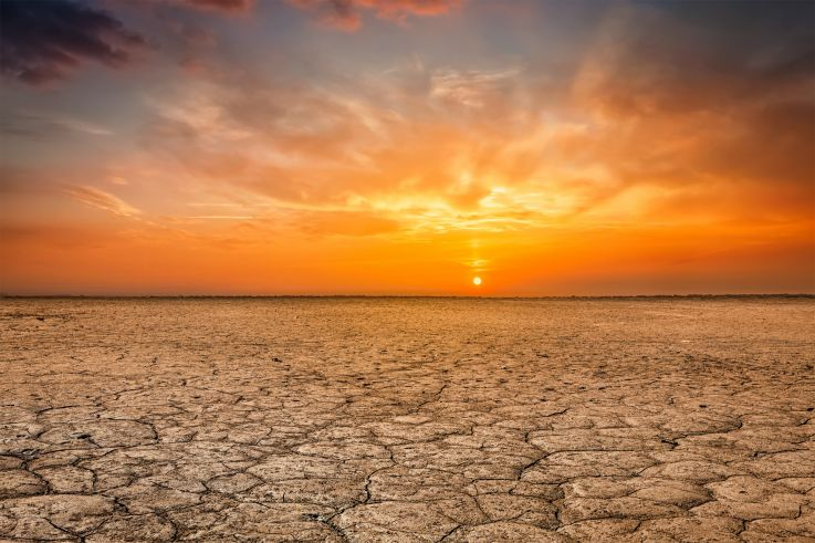 Calor extremo que se registró hace 50 millones de años amenaza con regresar y destruir la Tierra