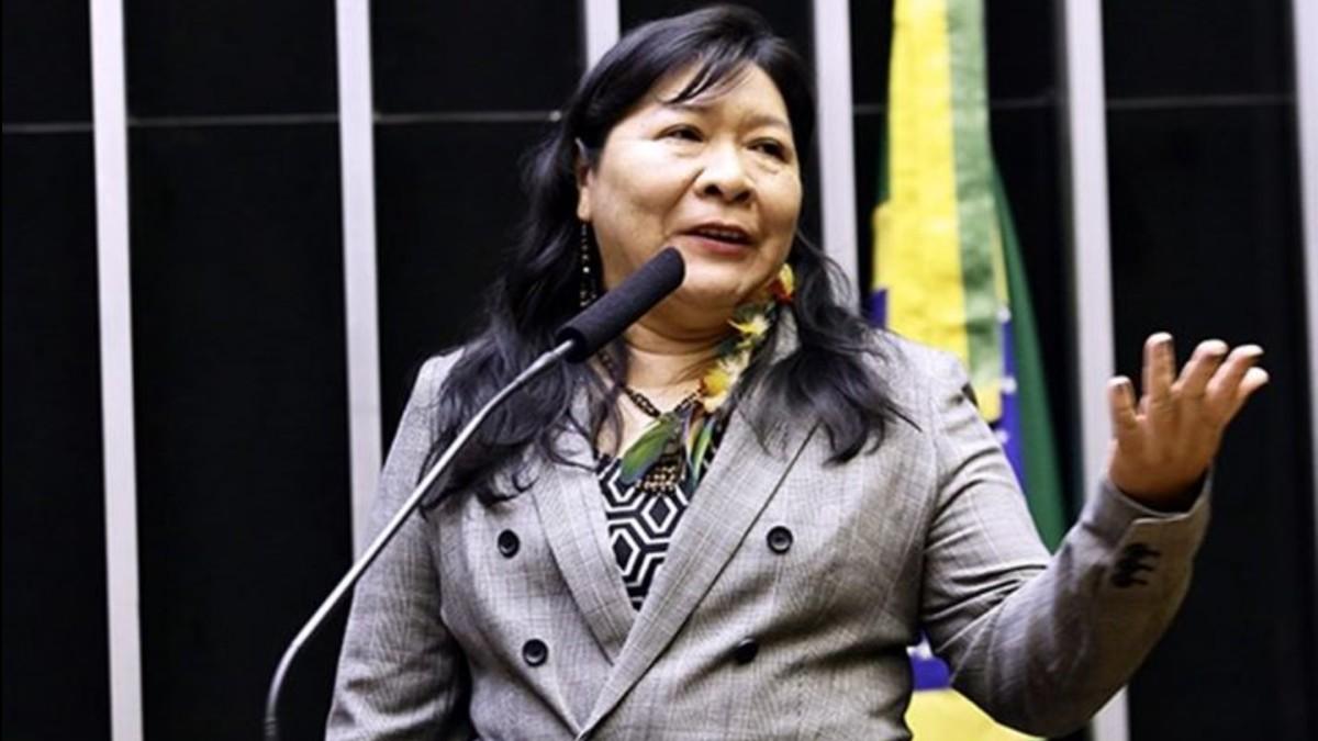 Bolsonaro pone en peligro a los pueblos indígenas de Brasil