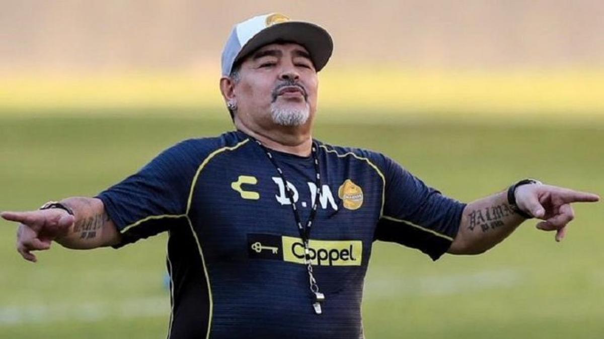 Diego Armando Maradona el próximo técnico de Gimnasia y Esgrima de La Plata