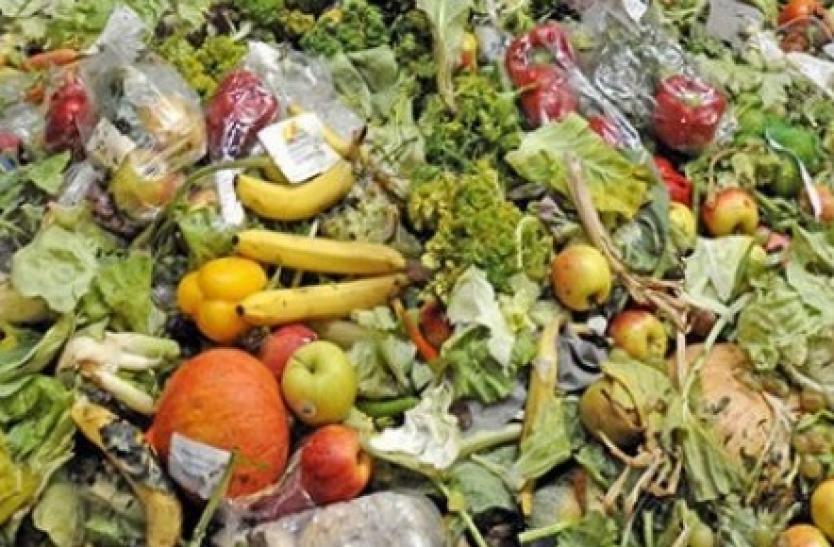 El actual sistema alimentario solo puede sostener a menos de la mitad de la población mundial