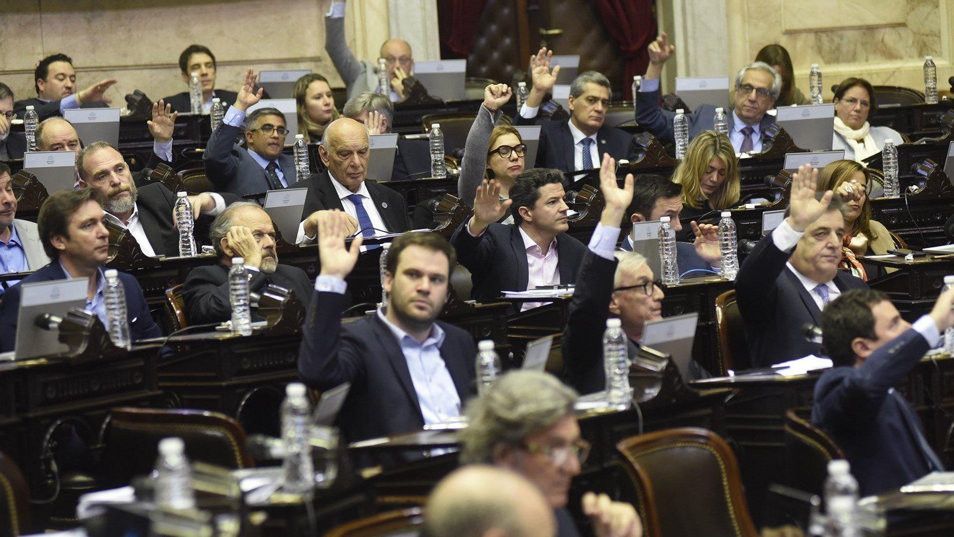 ¡Decisión unánime!: Diputados argentinos aprobaron proyecto de Ley de Emergencia Alimentaria