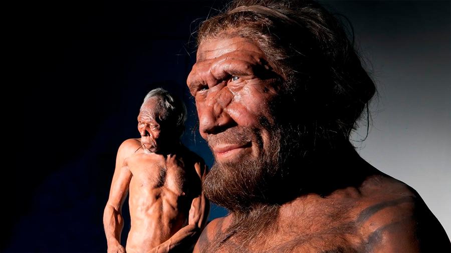 ¡Increíble¡ Hace 100.000 años convivieron diferentes grupos de humanos