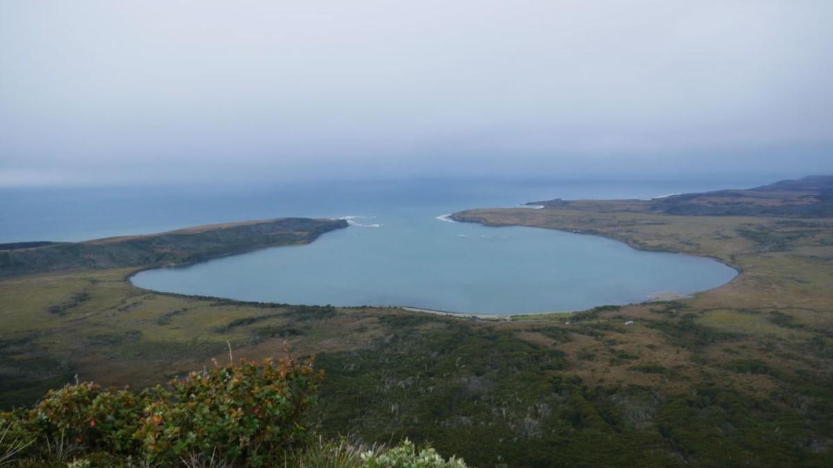 La Patagonia alberga una de las zonas con mayor absorción de CO2 de la región