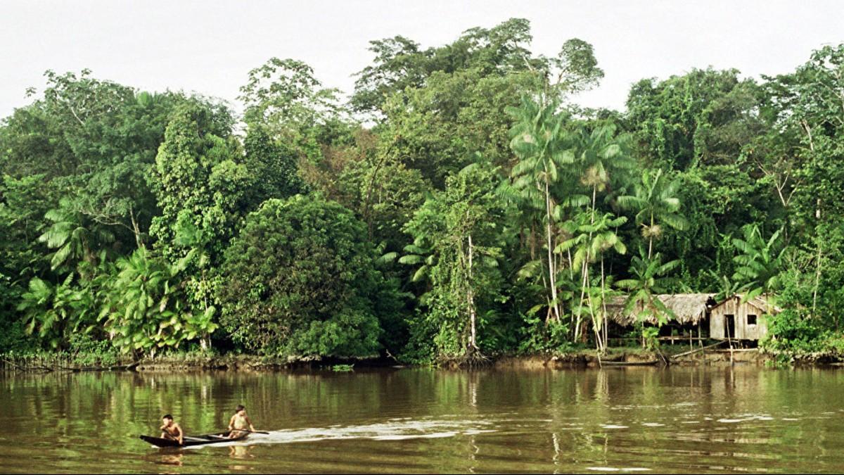 ¿Se acuerdan del Pacto de Leticia? Países con amazonía se congregan para elaborar un plan de conservación