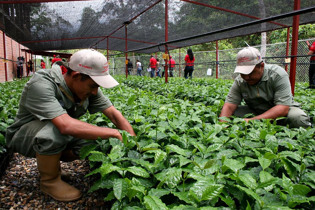 Pese al bloqueo, Venezuela reivindica su modelo económico socialista
