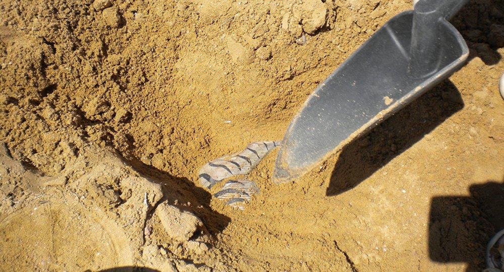 Arqueólogos hallaron catacumba de hace unos dos mil años en ciudad egipcia