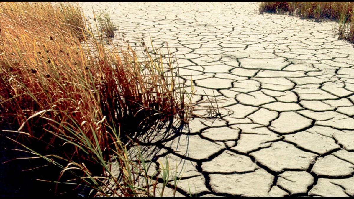 Dos Reservas y un Parque Nacional afectados por escasez hídrica