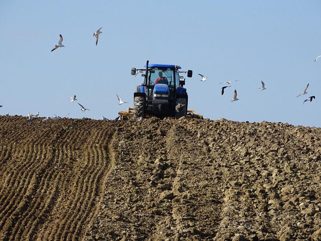 Denuncia de OLCA: Gobierno y sectores opositores dan espaldarazo a la agroindustria