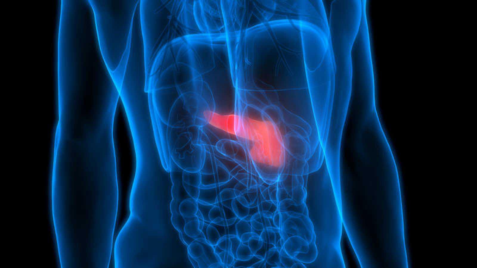 La combinación de dos fármacos puede reducir los tumores del cáncer de páncreas