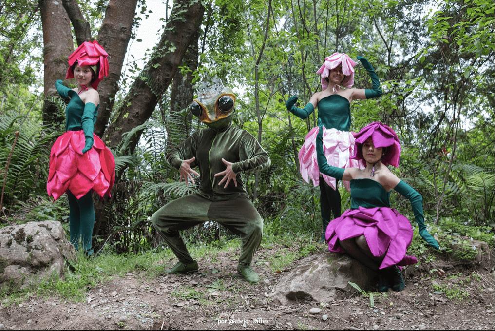 Multitudinario Carnaval del Sur llenó de magia a Puerto Varas