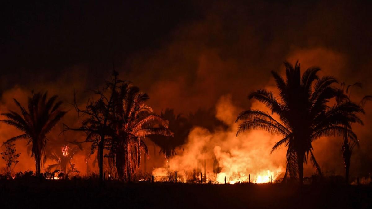¿Qué le depara al medio ambiente en Latinoamérica este 2020?