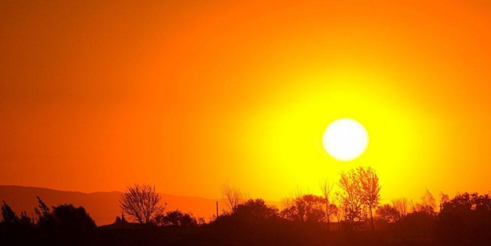 Segundo mes más caluroso en 140 años: el récord que marcó noviembre de 2019