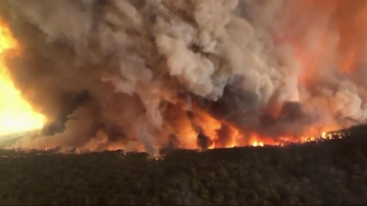 (Fotos y video) Australia recibe el 2020 en estado de emergencia por incendios forestales