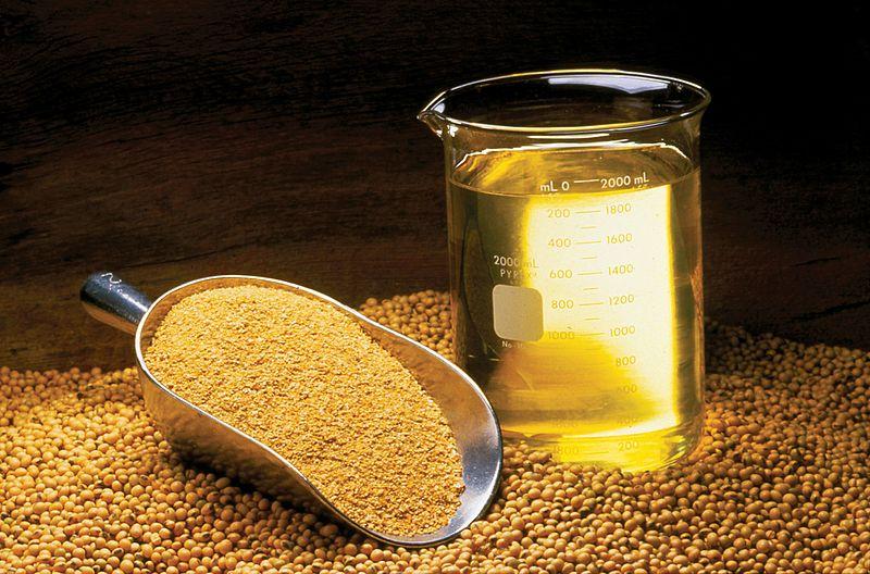 Advierten que aceite de soya podría causar daños cerebrales