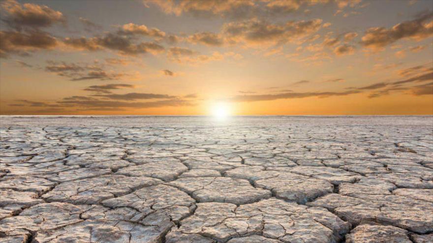 Científicos revelan que en los últimos diez años se registraron las temperaturas más altas de la historia