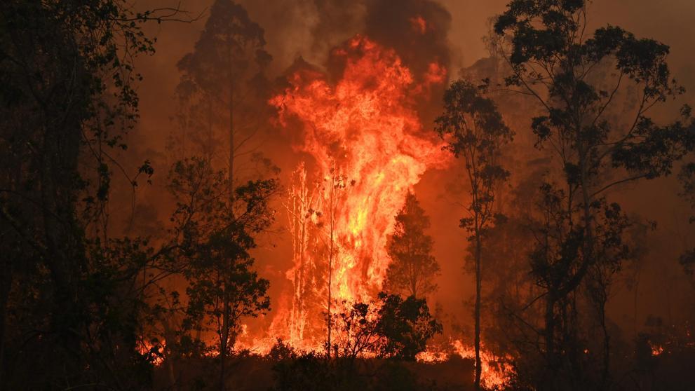Los incendios forestales de Australia fueron pronosticados hace una década