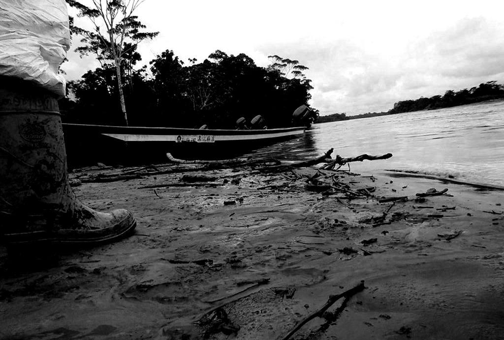 Galápagos, Guayas y Manabí: Ecuador enfrenta crisis por más 1.000 delitos ambientales en seis años