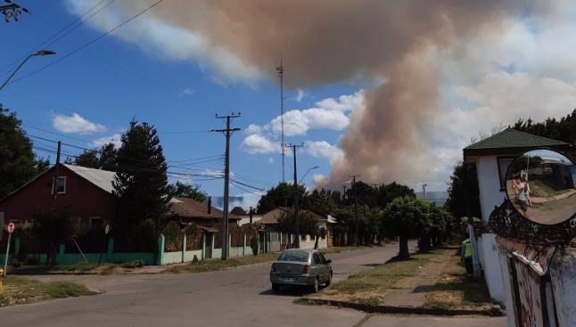 Onemi declara alerta roja para Reinaco por incendio forestal