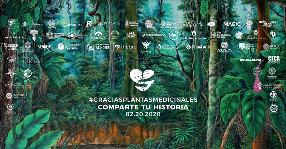 A partir del 20 de febrero miles de personas compartirán sus testimonios de sanación gracias a plantas medicinales y alucinógenas